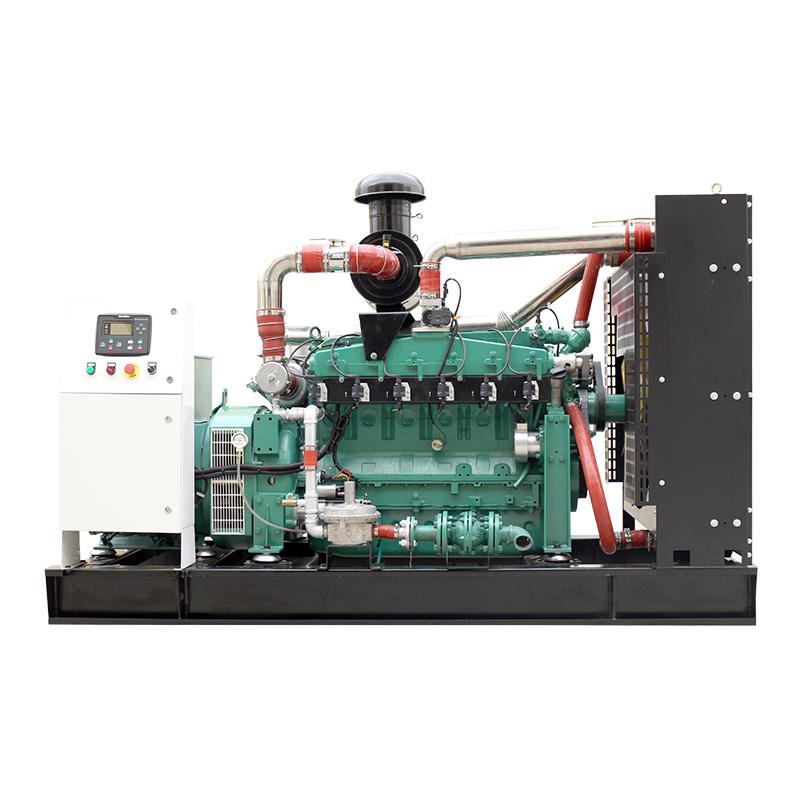 XSA-200GFQ Energy Saving Open Frame 24V Electric Start CE ISO Biogas Generator Sale