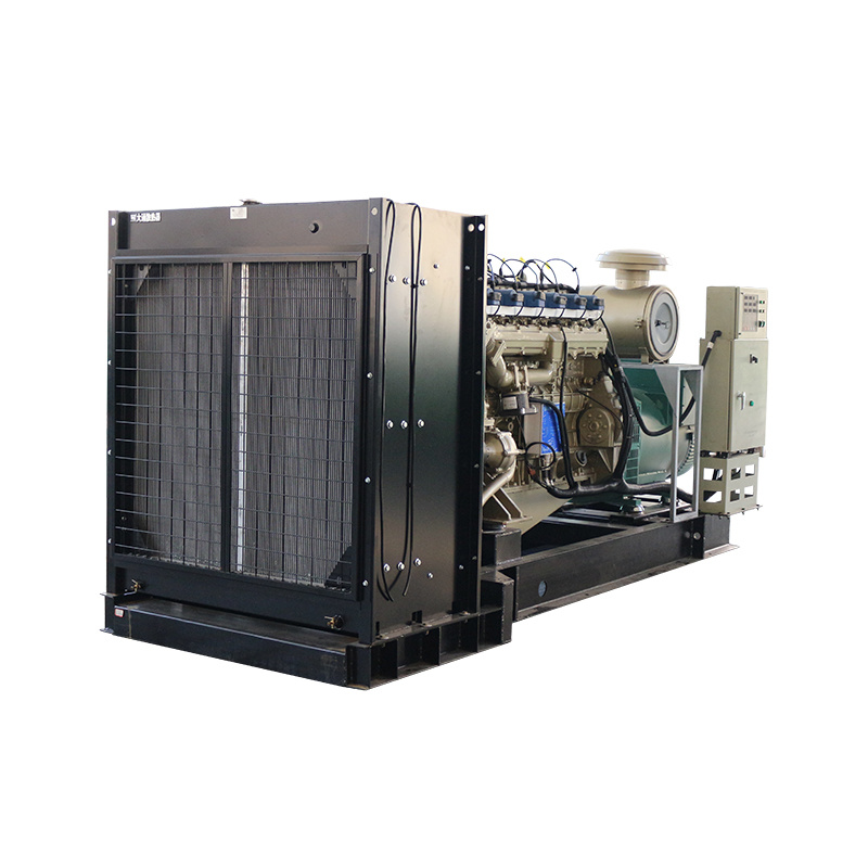 24v Electric StartWater Cooling 3-phase Generator Biogas For Customizable