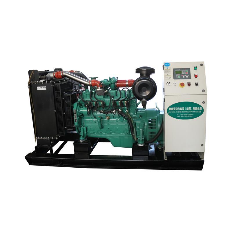 Xsa Open Frame 3-phase Biogas Turbinen Generator For Farm Waste
