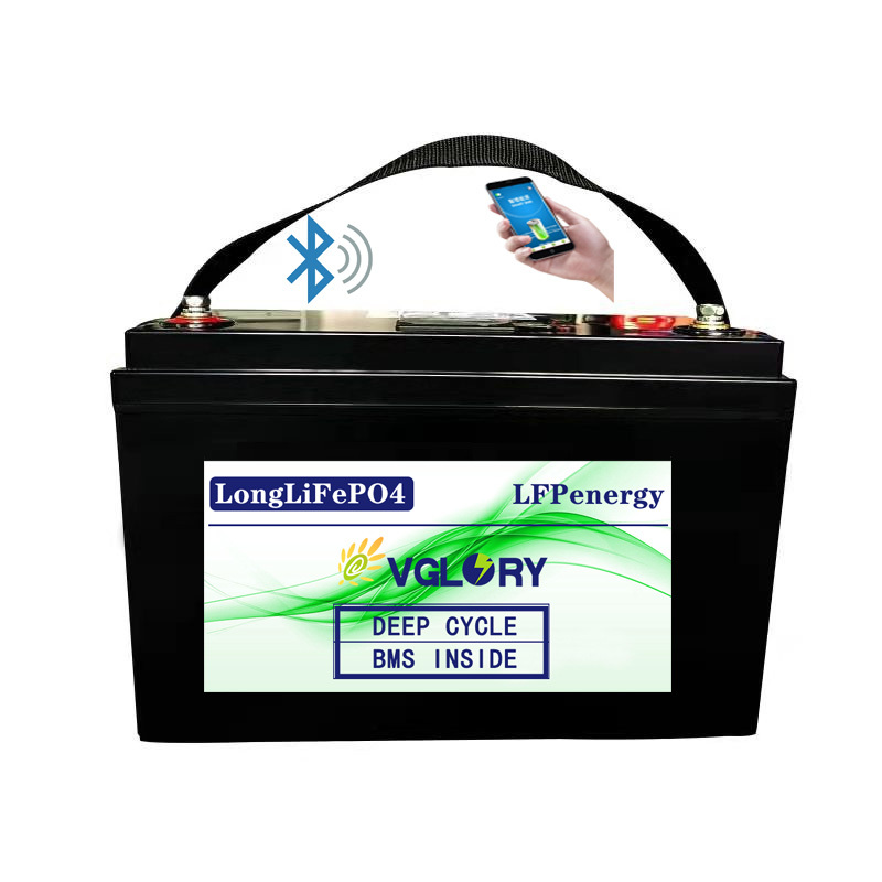 Economically light weight deep cycle 24v 24 volt lithium ion battery pack