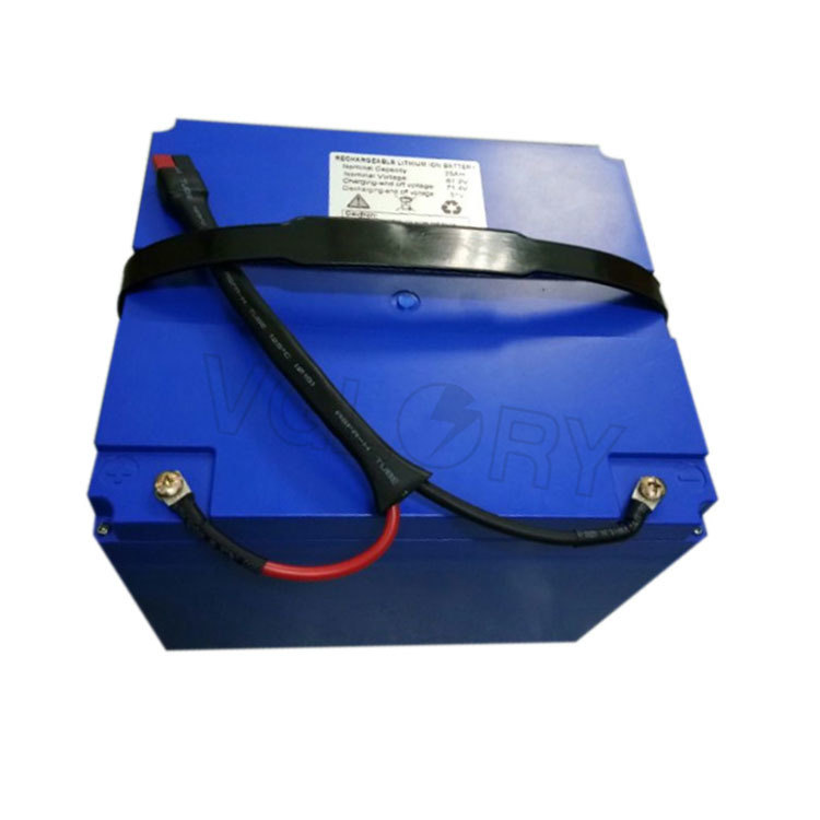 With BMS balancing system 12v 100ah lithium-ion battery packs