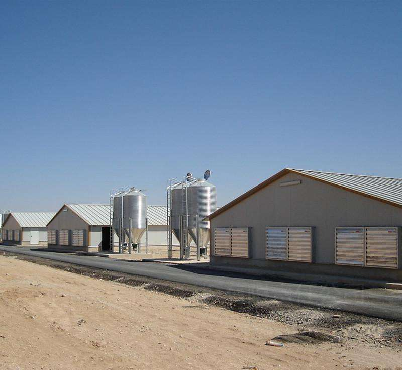 Prefabricate Prefab Steel Structure Dairy Cow Shed Farm Poultry House For 10000 Chickens Price