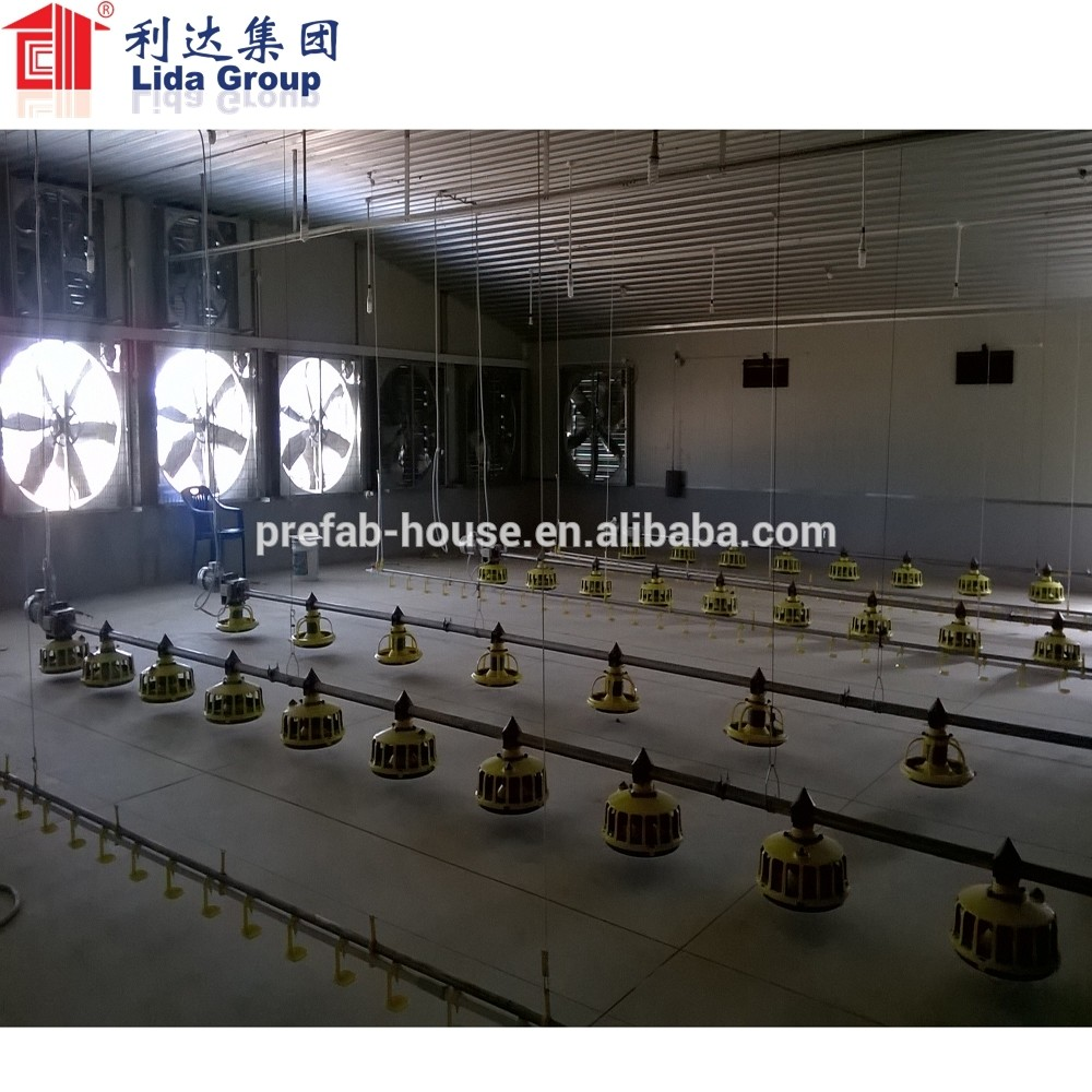 Prefabricated Broiler Chicken Poultry Farming House of Real Estate