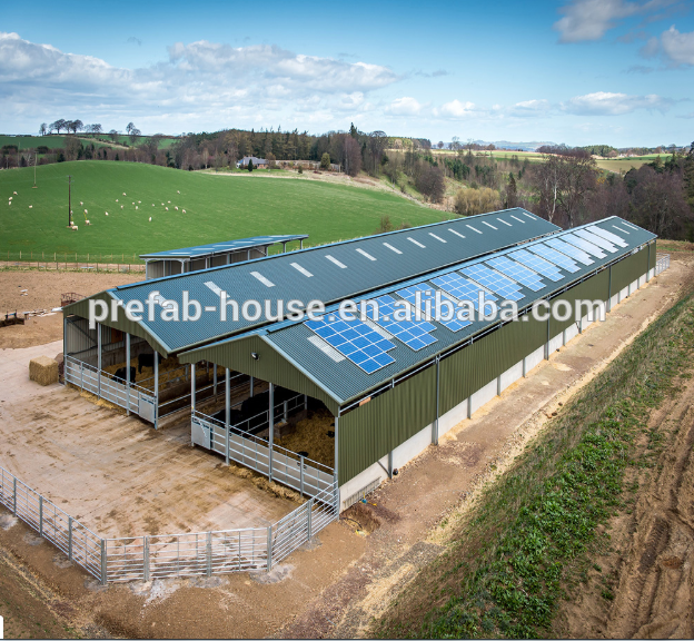 Prefab Steel Shed Horse Stable Metal Structure chicken Cow Farm Building