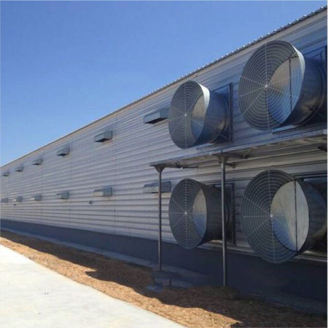 Steel poultry broiler galvanized low cost chicken farm