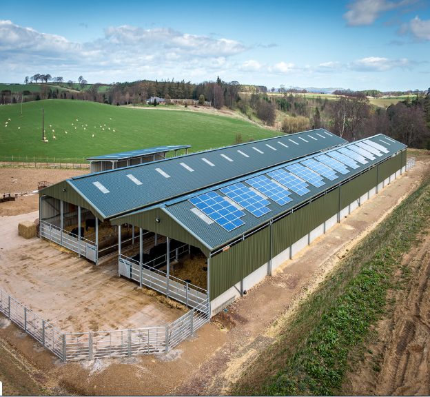 prefabricated portable prefab poultry houses Automatic Poultry House For 10000 Chickens