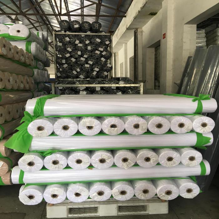 Polypropylen Nonwoven Fabric in Roll