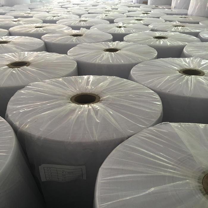 Polypropylene 100 Spun-Bonded Non Woven Fabric