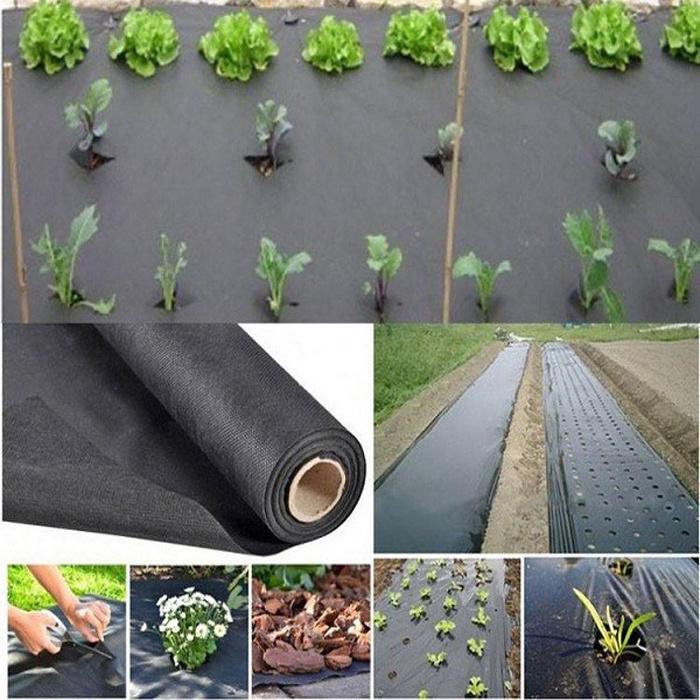 PP Spunbond Nonwoven 3% Anti-UV Agriculture Fabric