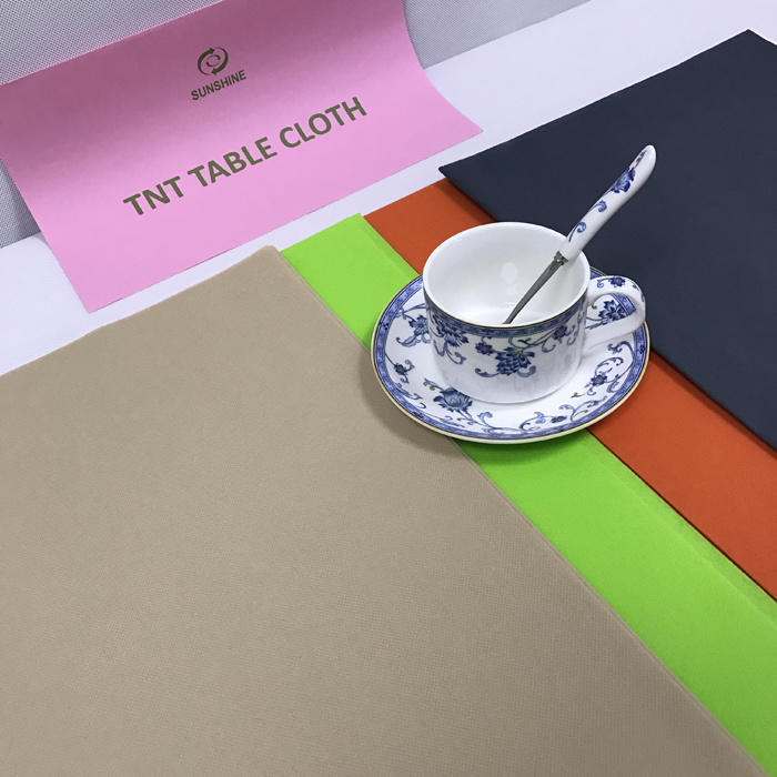 Hot Hot China Wholesale Manufacturer Home Textile TNT Non Woven Fabric