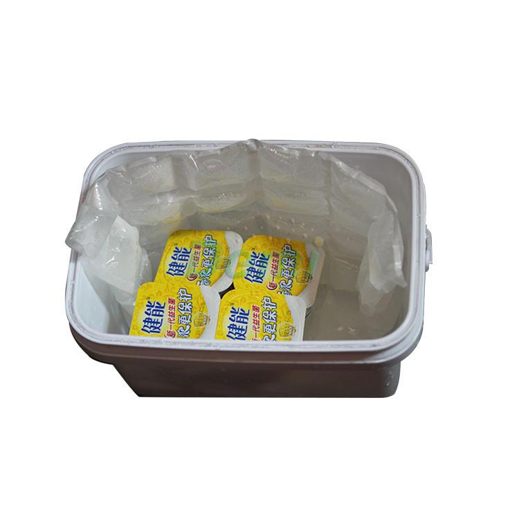 Hot sale high quality techni ice reusable dry ice packs food grade