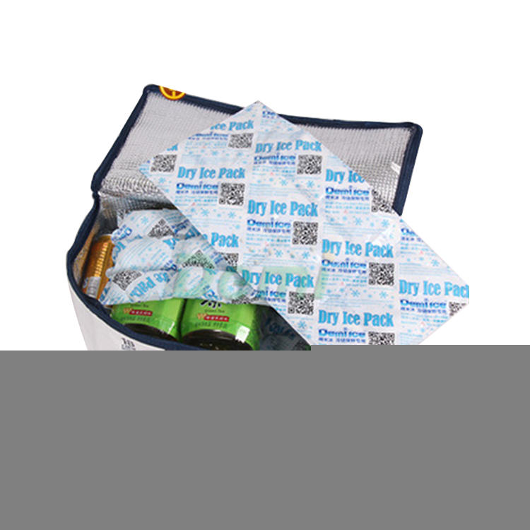 Wholesale customized FDA new style dry ice packs Food Grade Dry Ice Packs Cooler Bag Ice Boxes Reusable