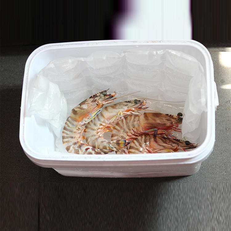Wholesale New Type Instant Ice Pack mini ice pack for food delivery