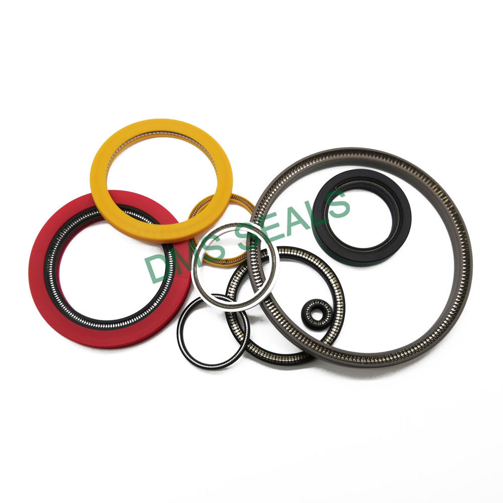 Chinese manufacturer variseal PTFE Glass/Pure PTFEspring energized seal double lip seal