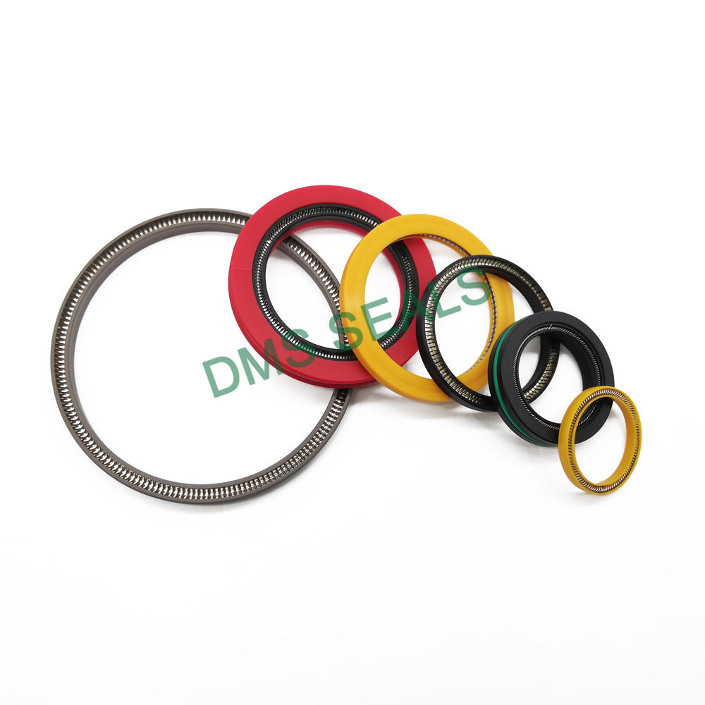 High Pressure PTFE/UPE/PEEK Rotary Seal SpringEnergized Seal