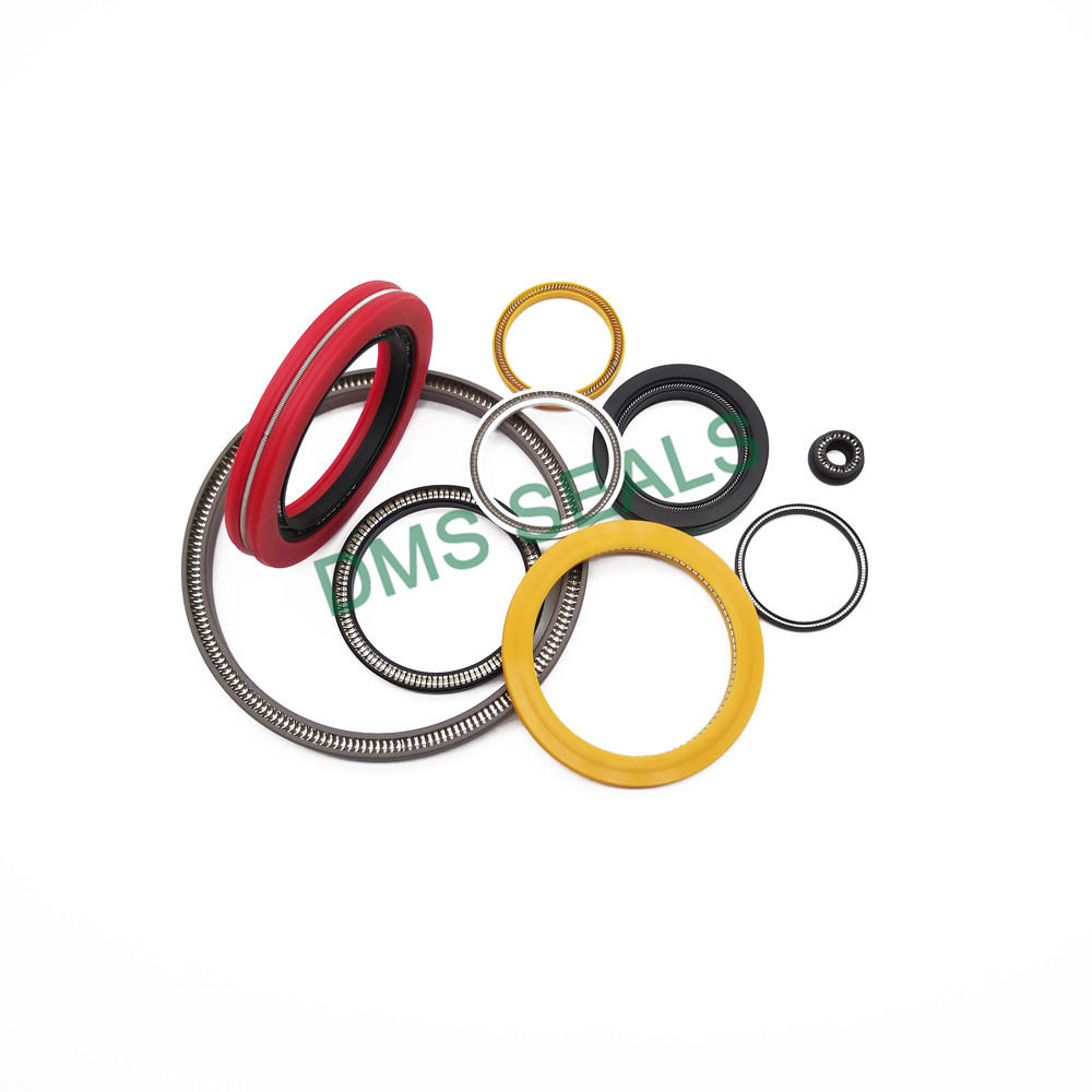 High Performance Spring Energized PTFE Seal For Hydraulic Rod Seal