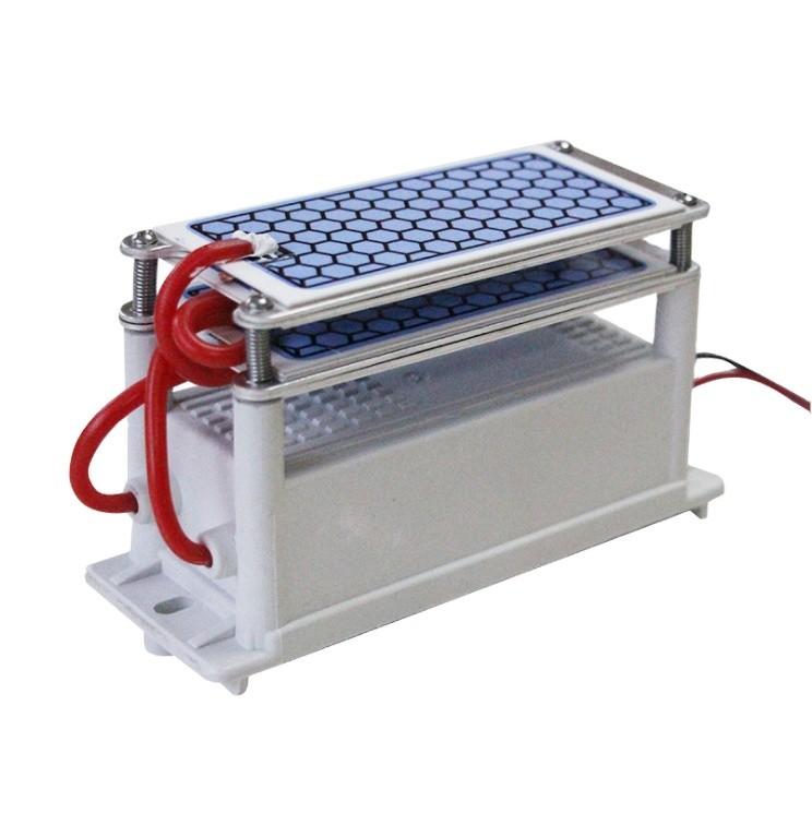 AC 220V 110V 20g/h Ceramic Ozone Generator Double Ceramic Plate Air Purifier Ozonizer Hot Selling in Italy Spain