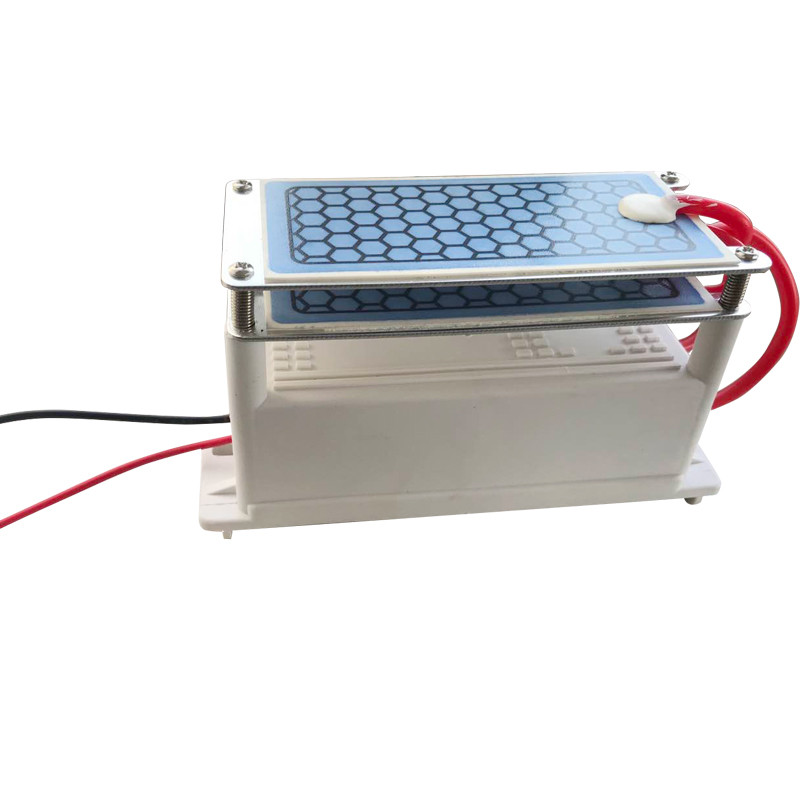 DIY Portable Ceramic CE EMC Ozone Generator 220V/110V 10g Air Ozonizer Machines