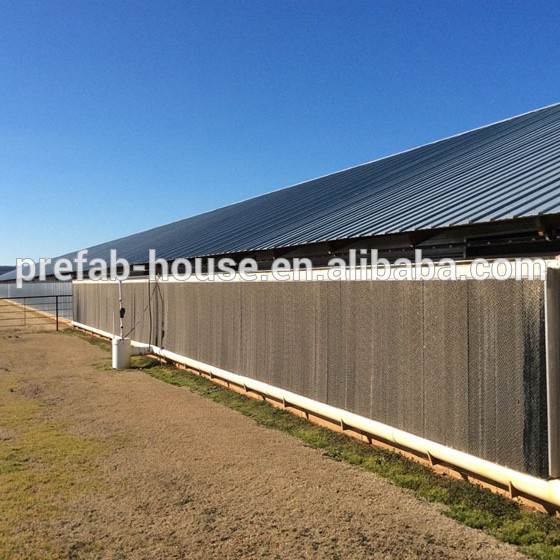 Free Designing Drawing Prefabricated Steel Structure Chicken House Steel Poultry House