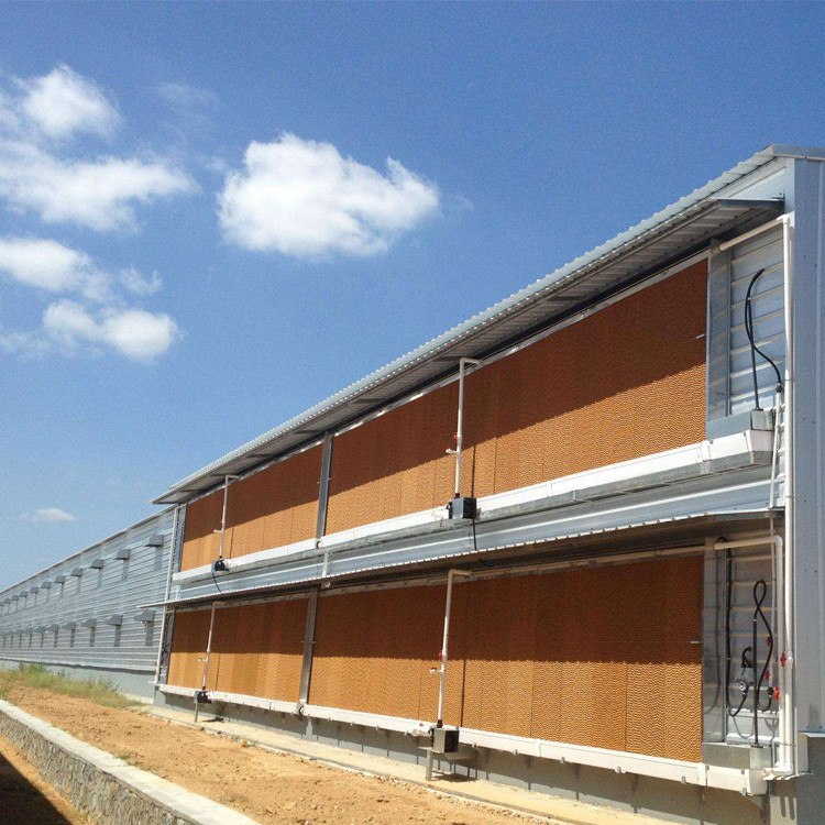 egg layer chicken and broiler chickenprefabricated poultry farm shed 100*12*4.5m