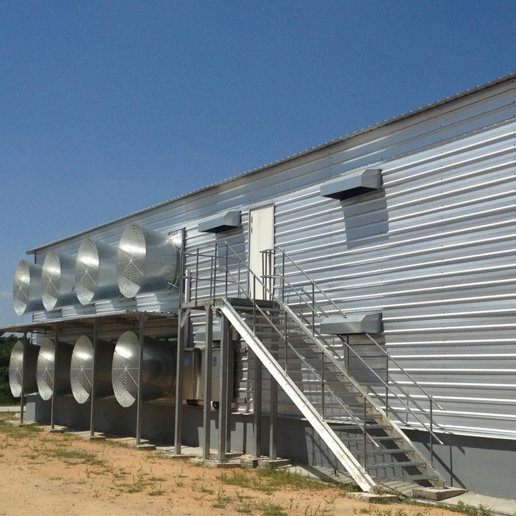 prefabricated cage system poultry shed ground system poultry house and floor system poultry shed