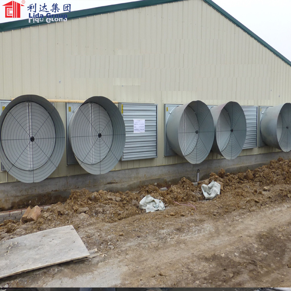 Prefabricated Light Steel Structure Broiler Poultry House for 10000 Chickens