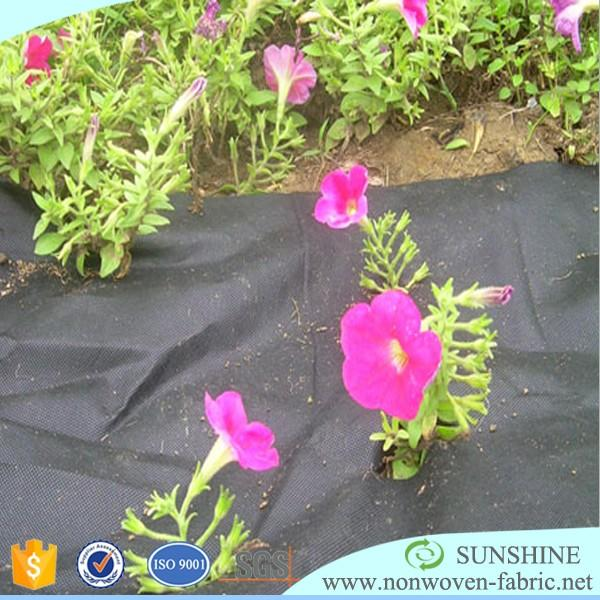 sunshine pp spunbonded nonwoven fabric for agriculture in 1m*15m roll