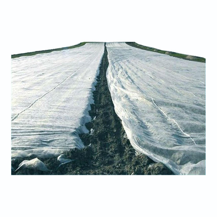 UV White Agriculture Ground Cover ,Black UV 10-50M Rolls Pp Spunbond Non Woven FabricFor Agriculture