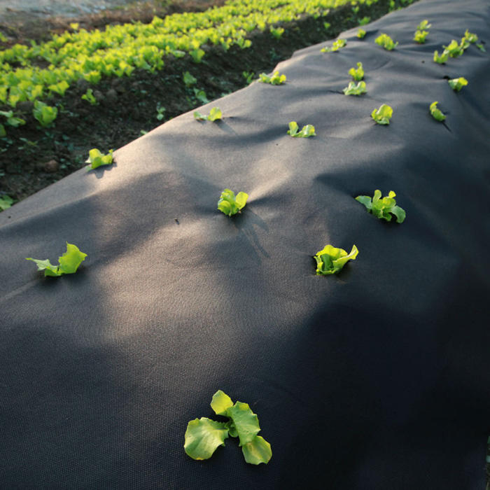 ecofriendly 100% polypropylene spunbonded nonwoven fabric agriculture non woven fabric weed landscape fabric pp weed mat
