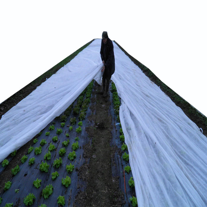 UV ,weed control agriculture non woven fabric White Agriculture Ground Coverweed killer