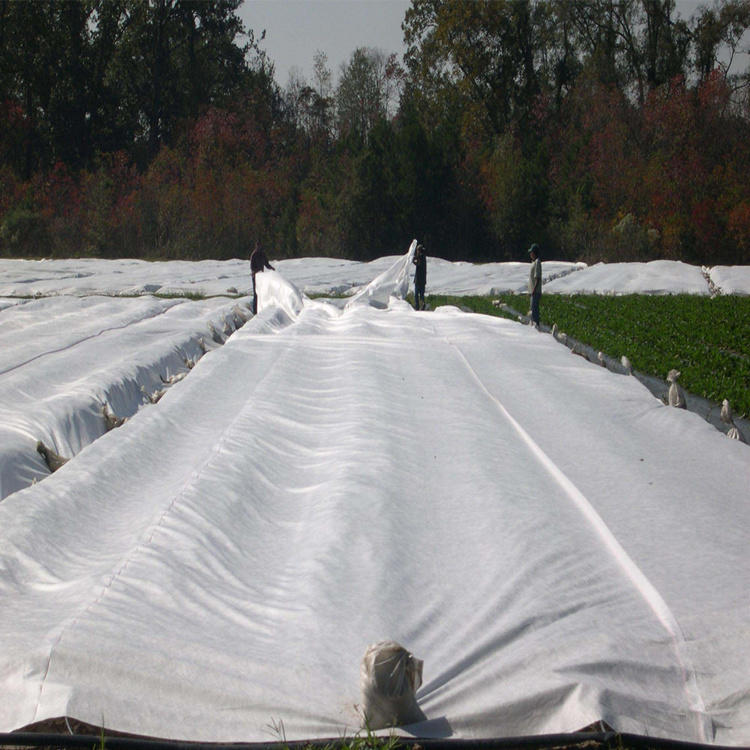 Good Product for PP Nonwoven Fabric with Anti-UV Protector for Agriculture Cover
