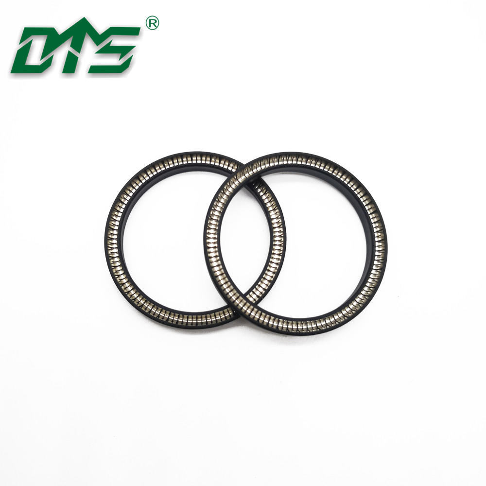 Double Lip Oil Seal Spring Energized Lip Seal