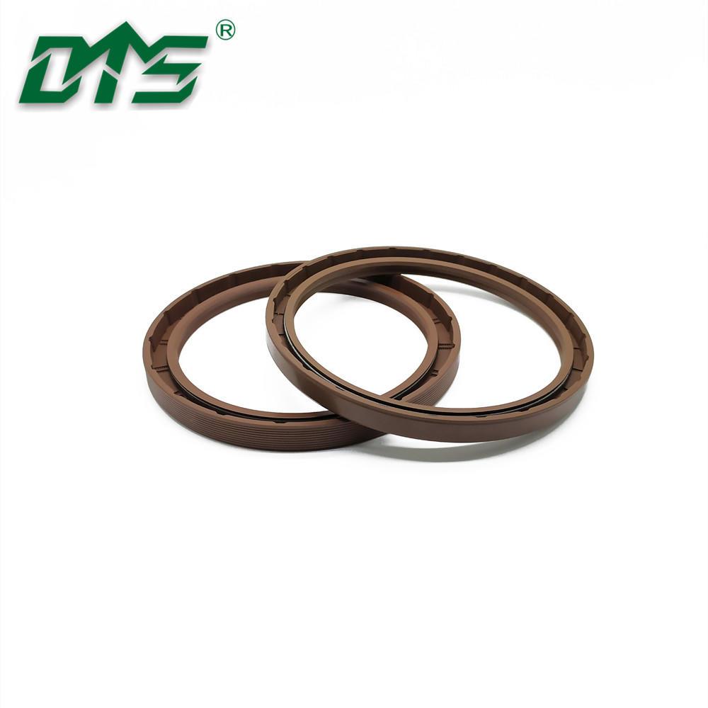 Double Lips Rubber FKM/FPM Hydraulic Motors Oil Seals TG for Engine