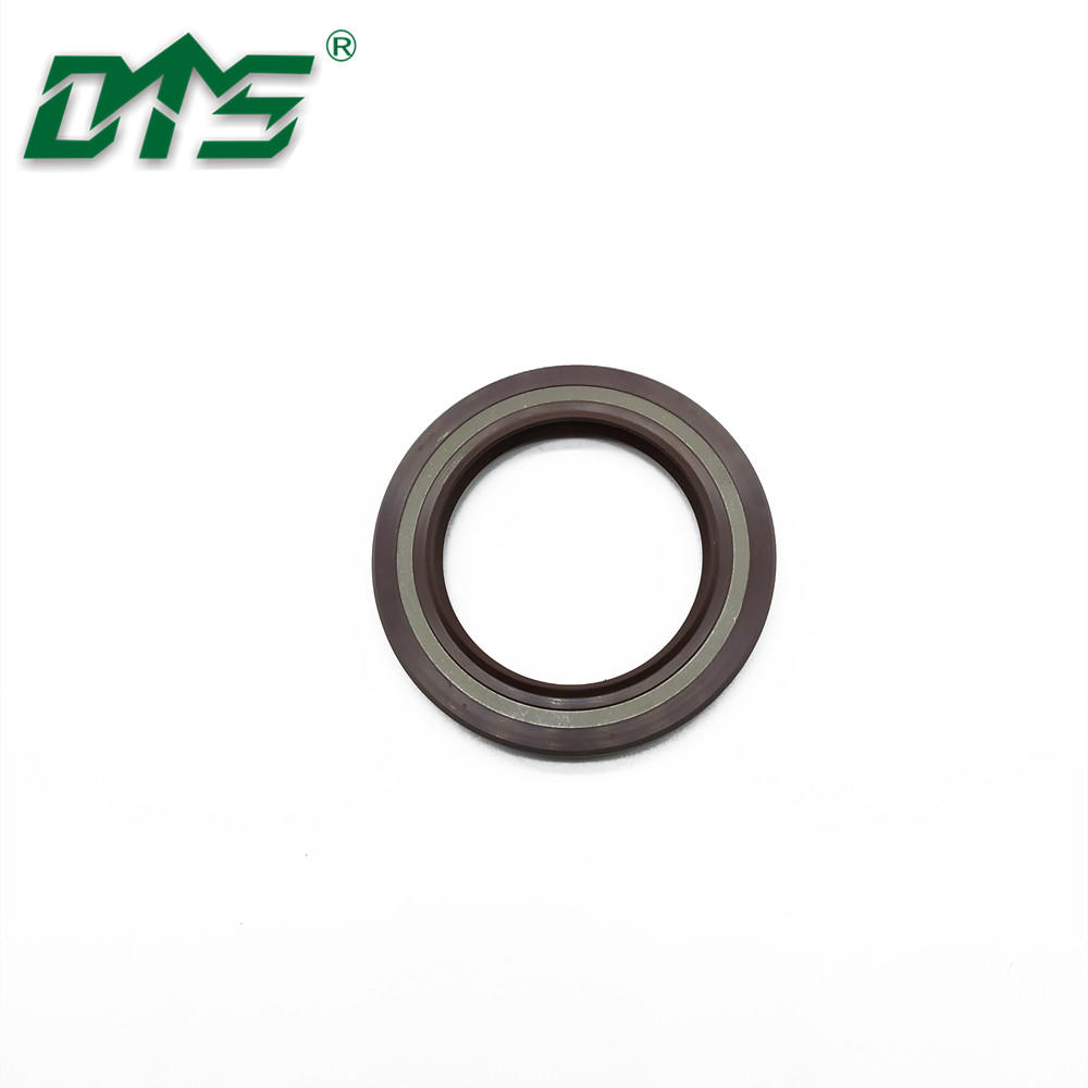 China Manufacture Skeleton Oil Seal TCV Rubber FKM/FPM Hydraulic Seal