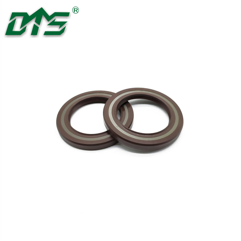 TCV FKM Dual Lips Oil Seals with Spring Loaded