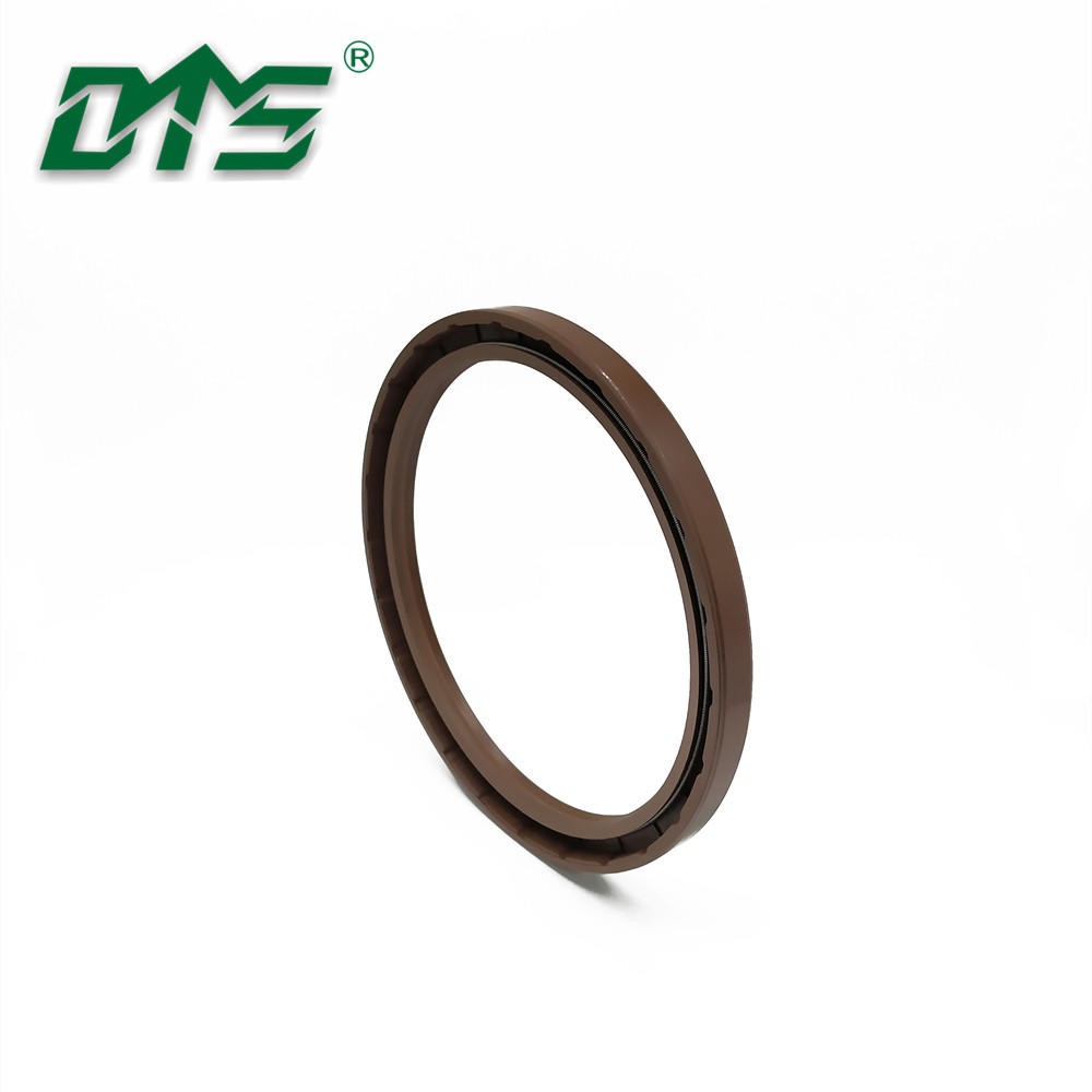 TC FKM Metric Double Lips with Spring Rotary Shaft Seals