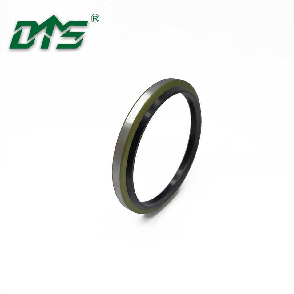 NBR Metal Oil Seal DKB DKBI for Excavating Hydraulic System