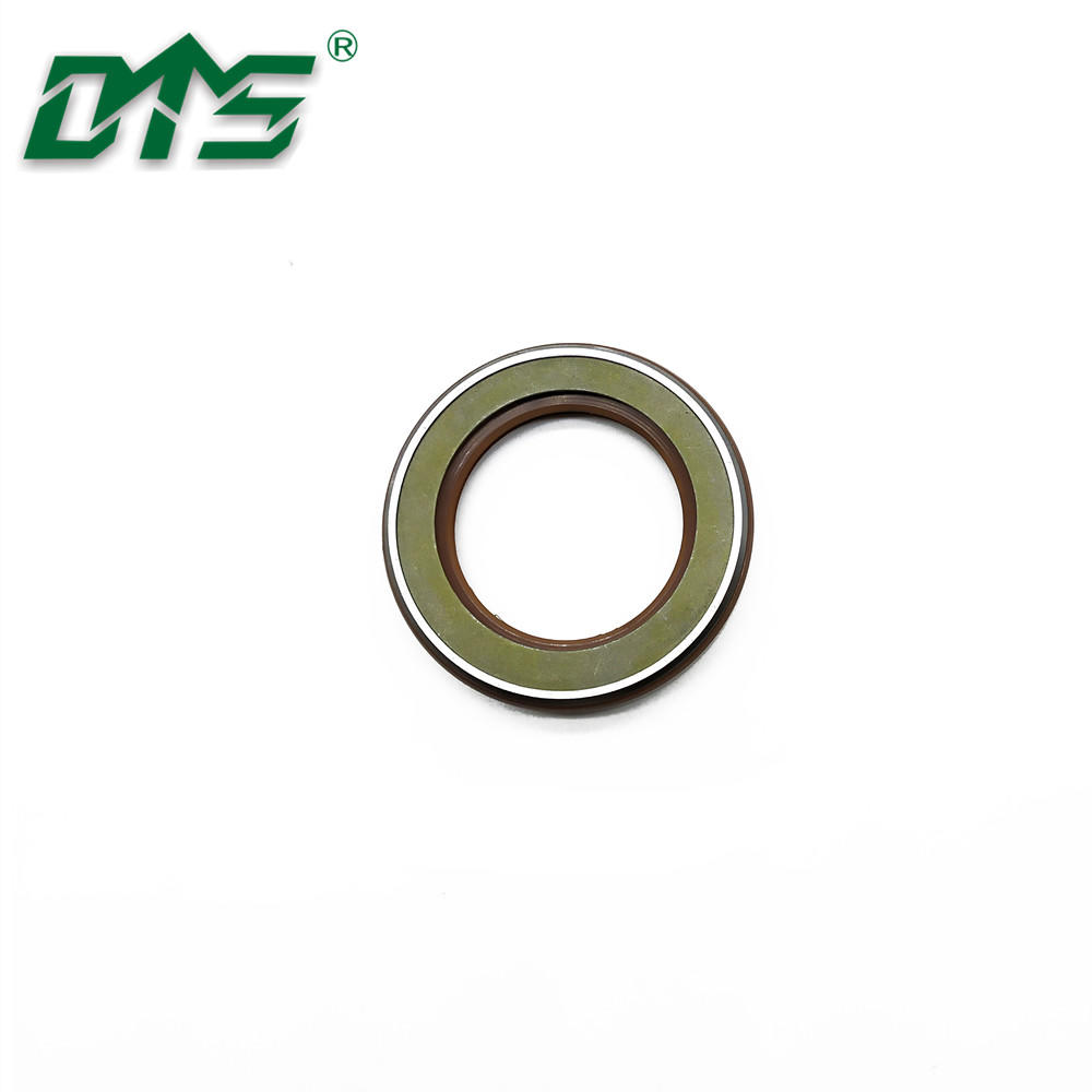 Rubber FPM FKM Tcn Oil Seal Skeleton Shaft Seal for Hydraulic Customized