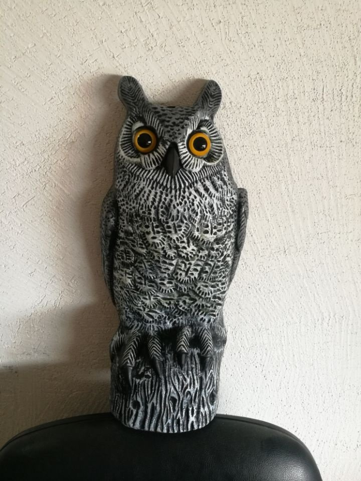 product-Osgoodway-OSGOODWAY Decorative Hot sell durable plastic birds garden ornament owl-img