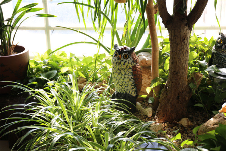 product-Osgoodway-OsgoodwayChina Factory WholesaleUV PP Plastic Garden Action Owl With Rotation Head
