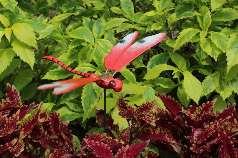 product-Osgoodway-Osgoodway Low price colorful plastic Dragonfly ornaments home decor-img