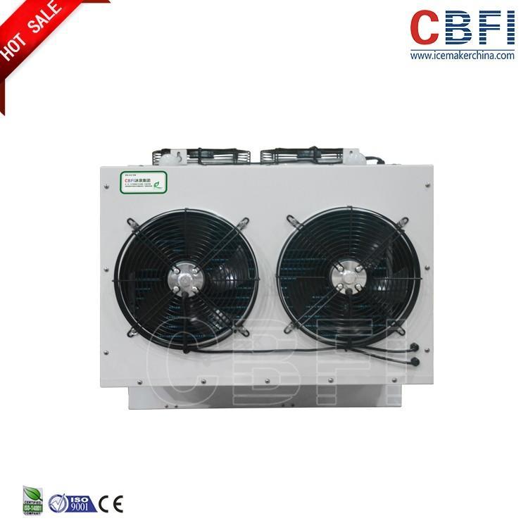 30 cubic meter Cold Storage Bitzer cooling fan