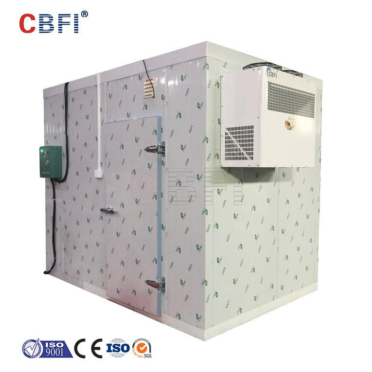 Germany Bitzer cold room condensing unit with PU panel for vegetable