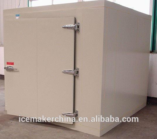 cold storage room freezer chiller guangzhou for keeping orange fresh