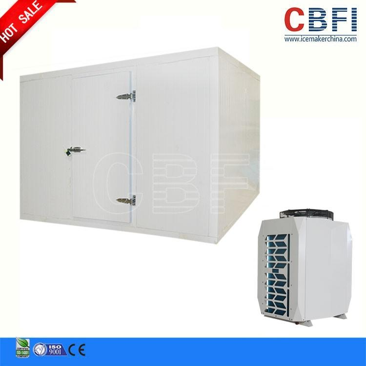 Mini cold room to store 1ton, 2tons fish, meat with best price