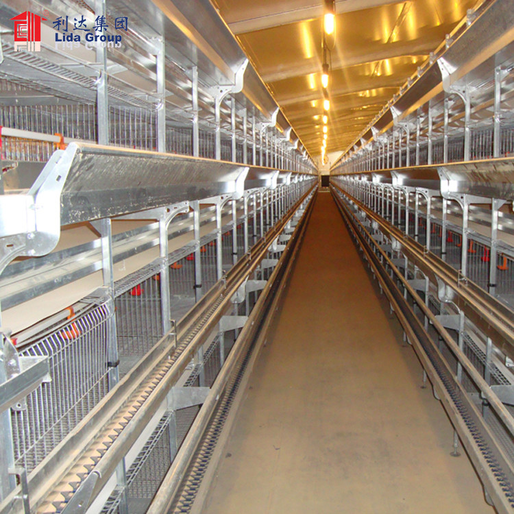 Climate control poultry farming for Lebanon