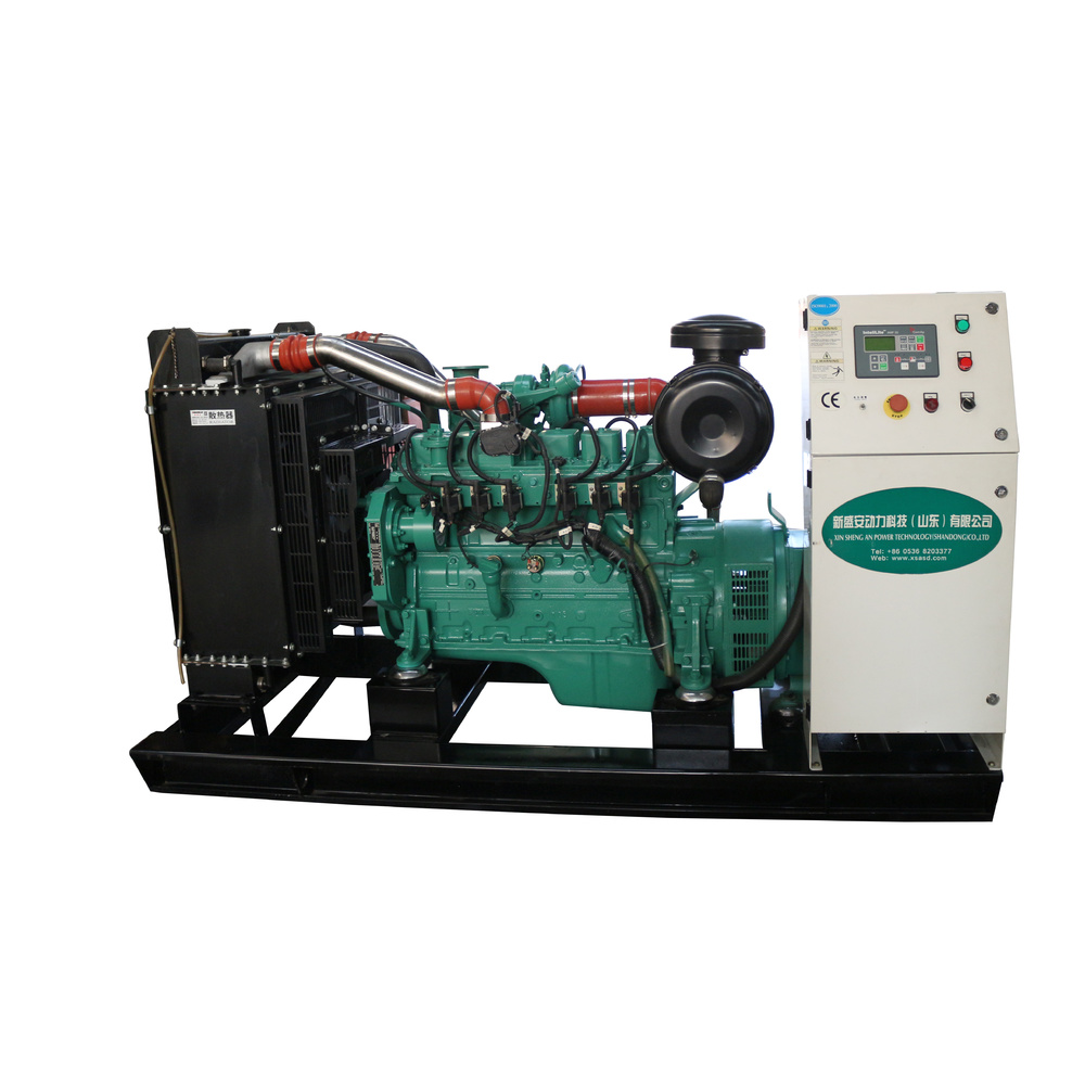 Home CE Approved 0.3m/kw.h Backup Generator Natural Gas