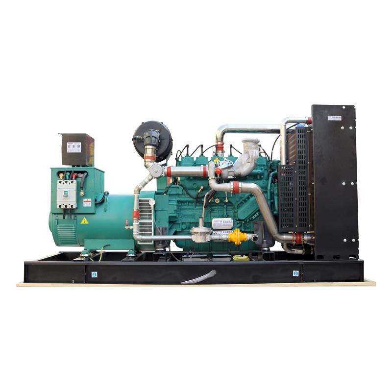 Natural Gas 24V Electric Start XSA-250GFQ 451A Natural Gas Electric Generator