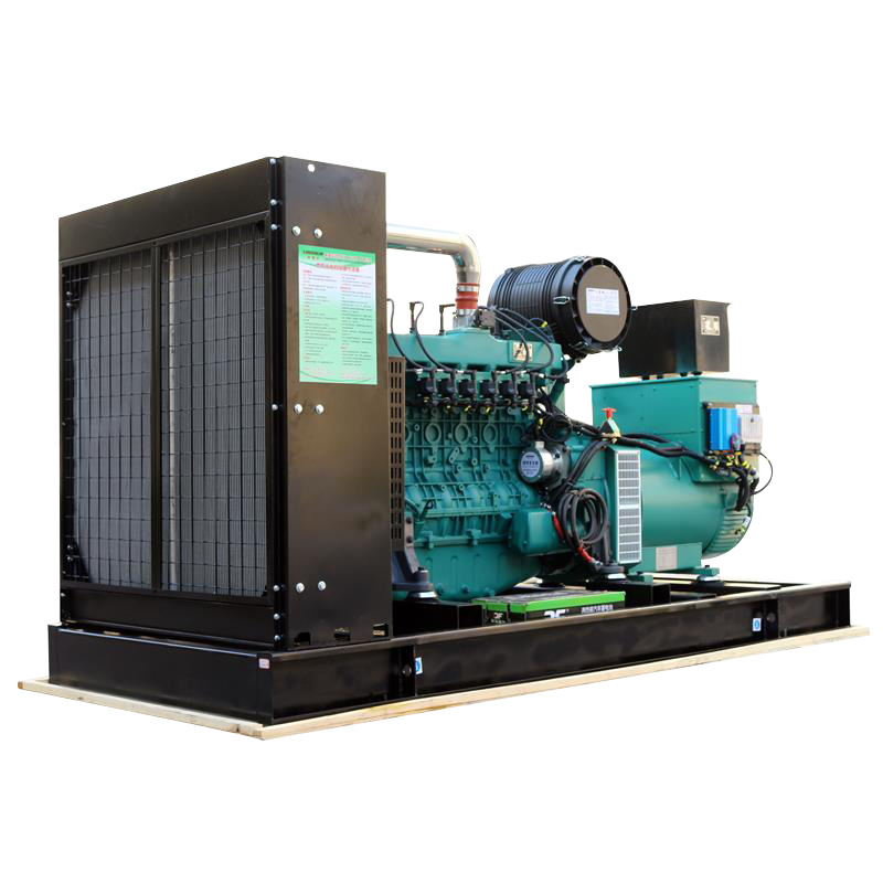 Factory Sales 0.3m^3/kw.h CE ISQ Standby Natural Gas Generator