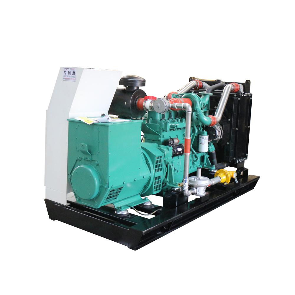 Bio Gas Open Frame Voltage 400V 230V Standby Generator Natural Gas